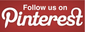 Follow-us-Pinterest1